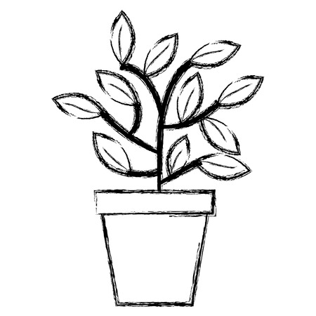 plant in pot icon vector illustration design
