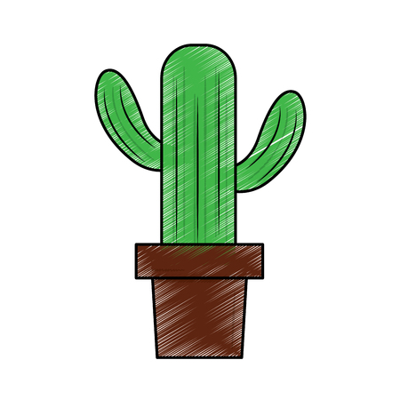 cactus in pot icon image vector illustration design