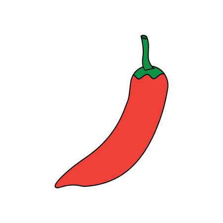 hot mexican chili pepper fast food ingredient vector illustration