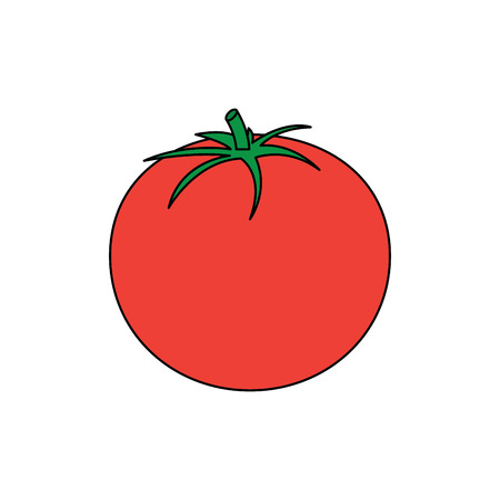 tomato vegetable icon image vector illustration design