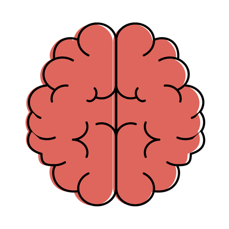 brain human isolated icon vector illustration design Stock Vector - 90406852