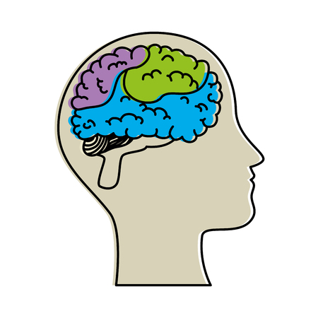 human profile with brain vector illustration design Vettoriali
