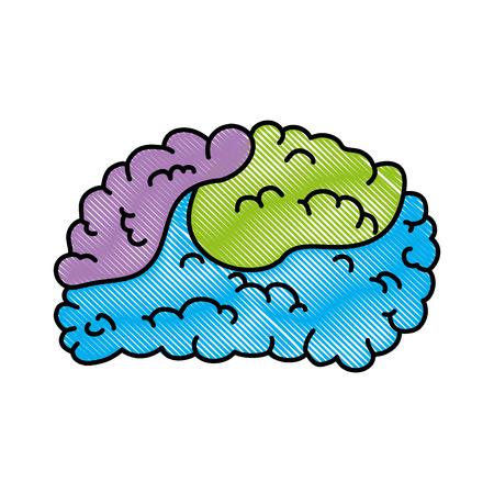 두뇌 인간의 고립 된 아이콘 벡터 일러스트 디자인 일러스트