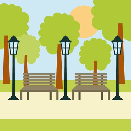 two benches street lamp and tree sun landscape vector illustration