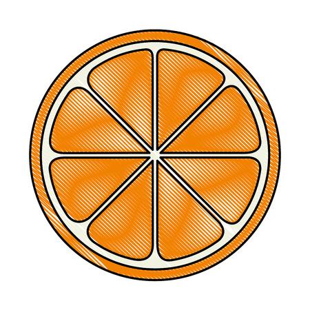 오렌지 슬라이스 격리 된 아이콘 벡터 일러스트 디자인