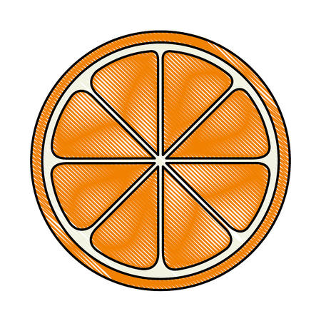 orange sliced isolated icon vector illustration design