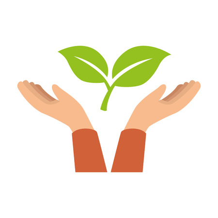 hands with leafs plant vector illustration design
