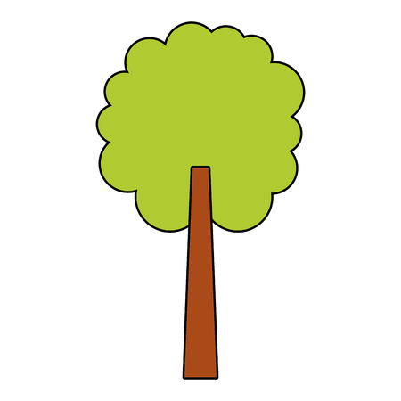 tree natural botanical ecology forest vector illustration