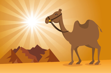 nature sand desert landscape vector illustration graphic design