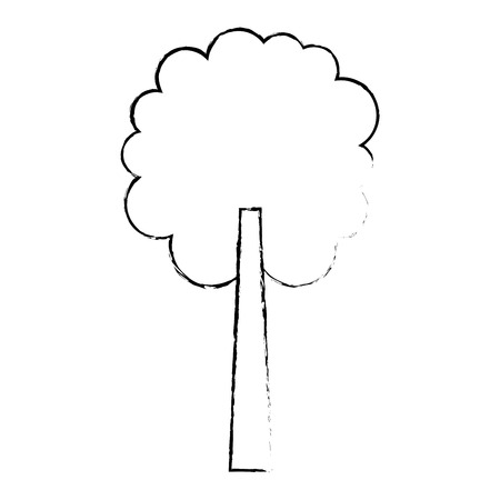 tree natural botanical ecology forest vector illustration sketch