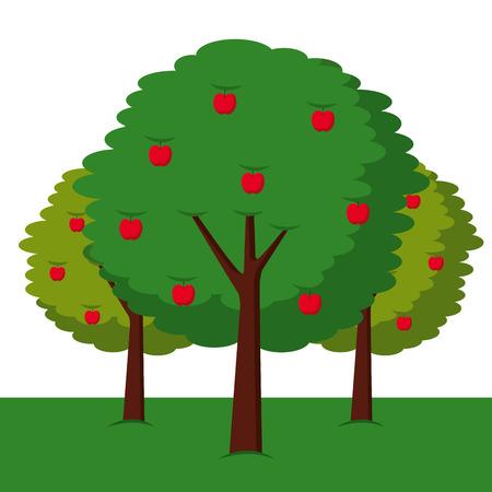 3つのりんごの木ブッシュ葉果実自然ベクトルイラスト  イラスト・ベクター素材