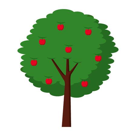 Botanische Vektorillustration der Fruchtapfelbaum-Landwirtschafts-Natur Standard-Bild - 90694359