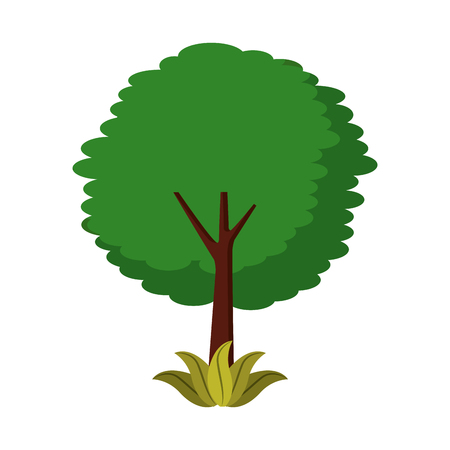 잎이 많은 나무 잎 트렁크 단풍 자연 식물 벡터 일러스트