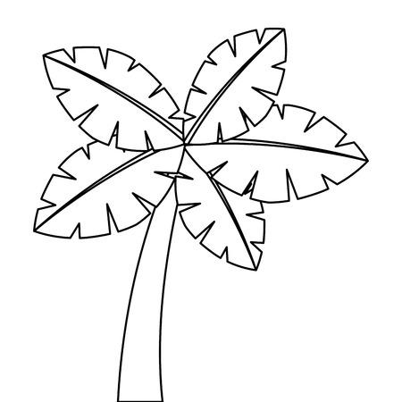tropische palmboom exotische plant kofferbak aard vectorillustratie Stock Illustratie