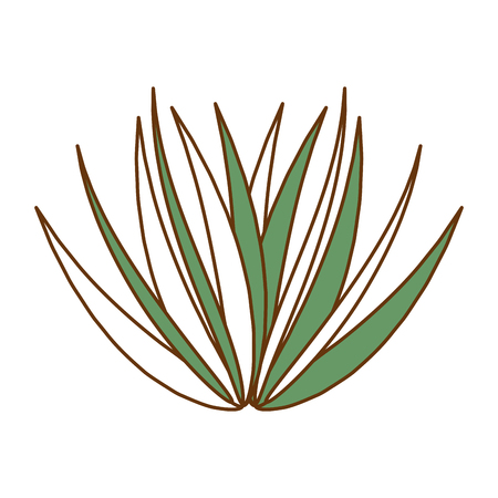 palm leaf isolated icon vector illustration design