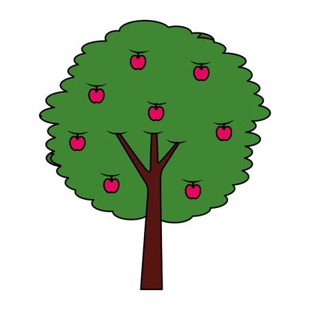 fruit appelboom landbouw natuur botanische vectorillustratie