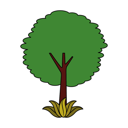 leafy tree leaves trunk foliage natural botanical vector illustration