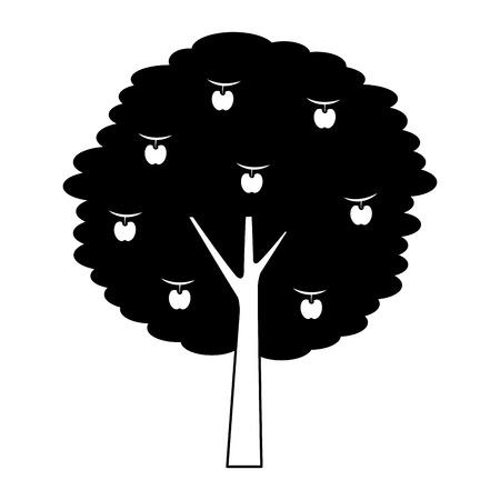 과일 사과 나무 농업 자연 식물 벡터 일러스트 레이션