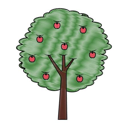 과일 사과 나무 농업 자연 식물 벡터 일러스트 그리기