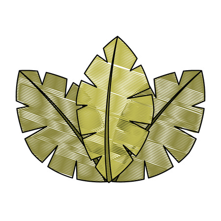 tropical leaves of palm tree flora image vector illustration drawing Иллюстрация