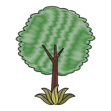 Leafy tree Ilustracja
