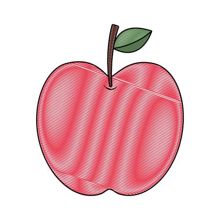 Red fruit Illustration