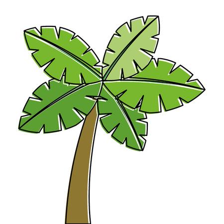 열대 야자 나무 이국적인 식물 트렁크 자연 벡터 일러스트 레이션