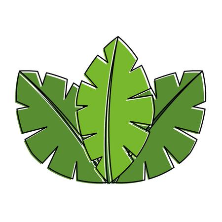 팜 트리 플로라 이미지 벡터 일러스트 레이 션의 열대 나뭇잎