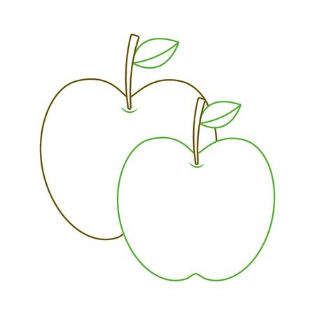 two apple fruit tropical nutrition food health vector illustration green line Ilustração