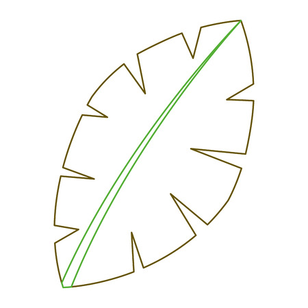 leaf palm tree foliage natural image vector illustration green line