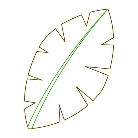 leaf palm tree foliage natural image vector illustration green line