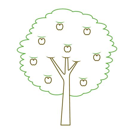 과일 사과 나무 농업 자연 식물 벡터 일러스트 레이 션 녹색 라인 일러스트