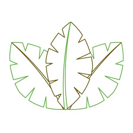 tropische bladeren van palm flora afbeelding vector illustratie groene lijn
