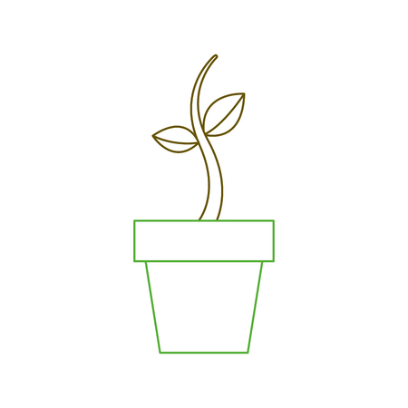 potted growth plant natural flora botanical vector illustration green line