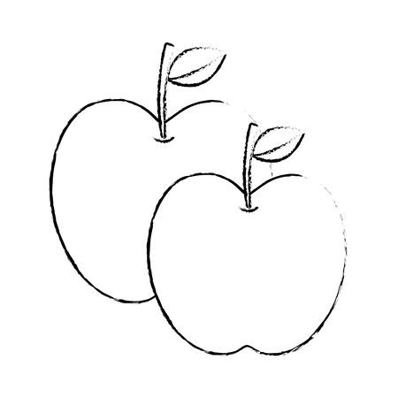 2つのリンゴ果実熱帯栄養食品健康ベクトルイラスト