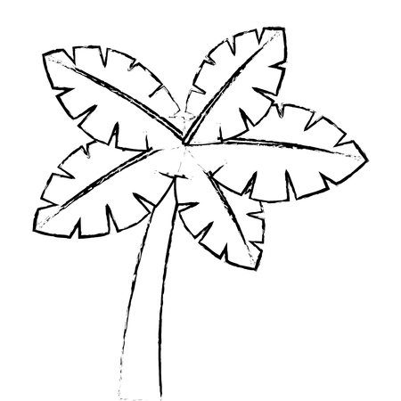 Tropische palmboom exotische plant kofferbak aard vectorillustratie Stockfoto - 90828971