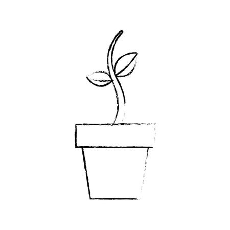 potted growth plant natural flora botanical vector illustration