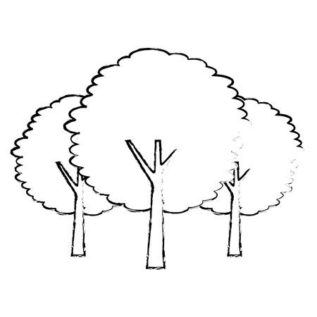 three tree plant botanical natural forest vector illustration