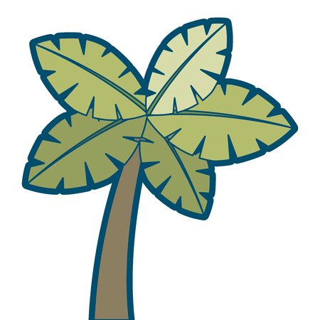 tropical palm tree exotic plant trunk nature vector illustration 向量圖像