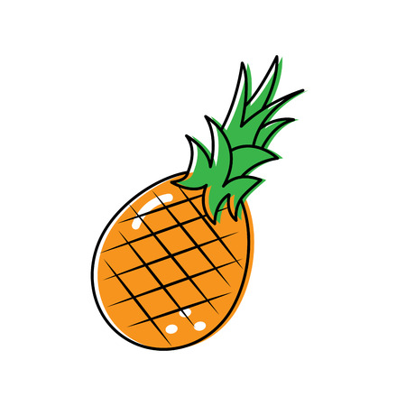 pineapple fruit delicious vitamins nutrition food vector illustration 向量圖像