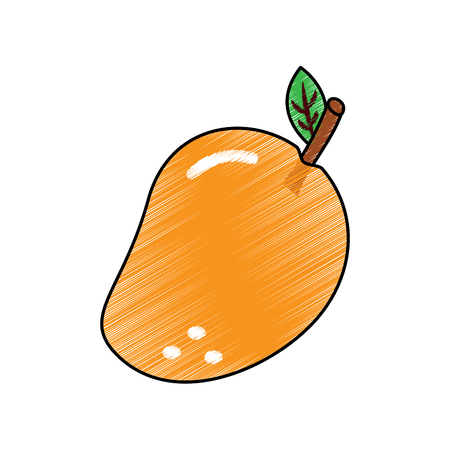 fruit delicious vitamins nutrition food vector illustration
