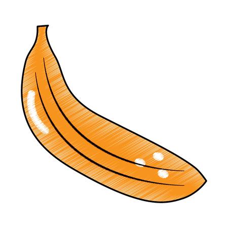 banana fruit delicious vitamins nutrition food vector illustration Illustration