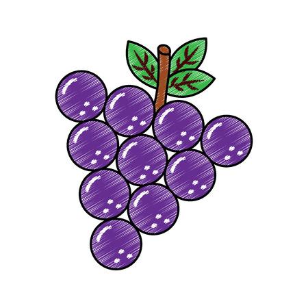 포도 과일 맛있는 비타민 영양 식품 벡터 일러스트 레이션 스톡 콘텐츠 - 90838740