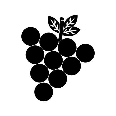 Grapes fruit, food vector illustration