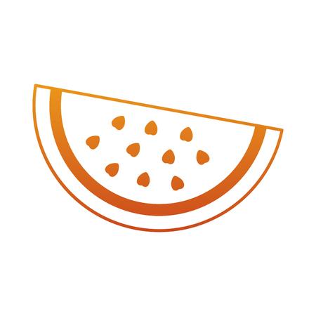 Watermelon fruit delicious vitamins nutrition food vector illustration Illustration