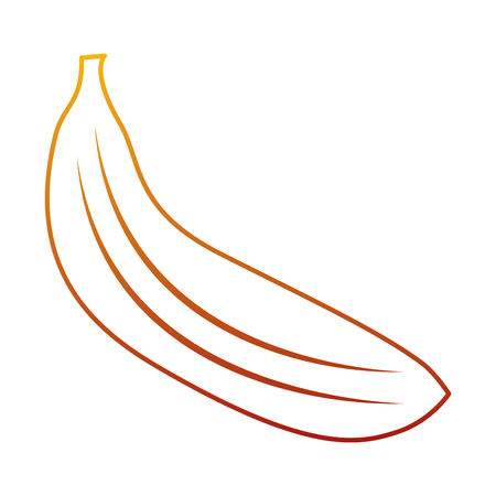 바나나 과일 맛있는 비타민 영양 식품 벡터 일러스트 레이션