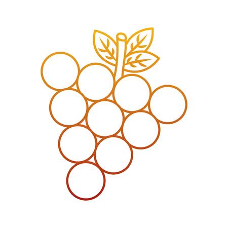 포도 과일 맛있는 비타민 영양 식품 벡터 일러스트 레이션 스톡 콘텐츠 - 90837935