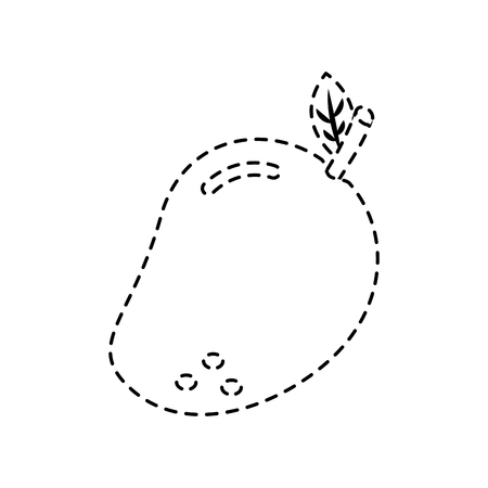 mango fruit food vector illustration