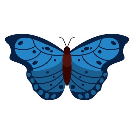 나비 곤충 버그 아이콘 이미지 벡터 일러스트 디자인 일러스트