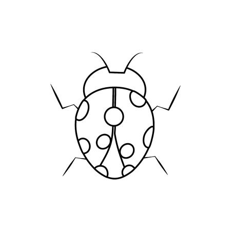 ladybug insect bug icon image vector illustration design black line black line